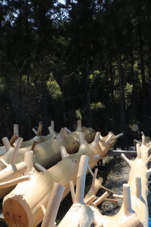 桧枝付き 乾燥中