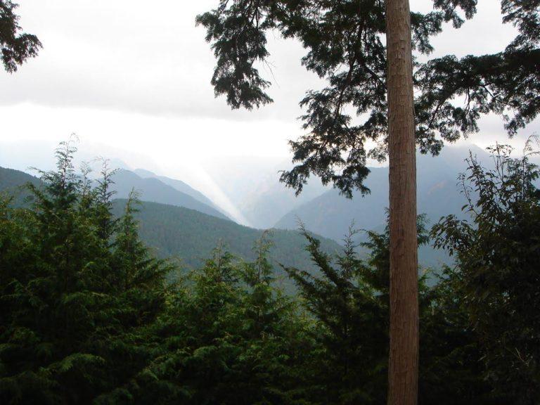 吉野郡川上村の山の景色