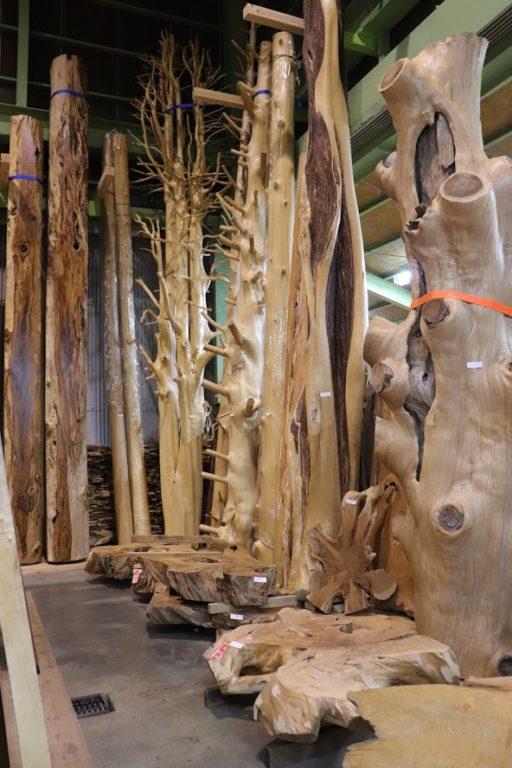 4~6mのいろんな樹種があります